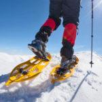 Ciaspole con la neve: quali sono i migliori percorsi da effettuare